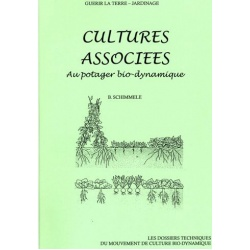 cultures-associees-au-potager